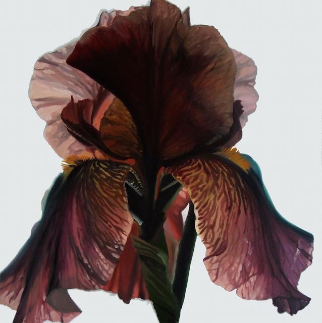 , 'Dark Iris #2,' 2015, Piermarq
