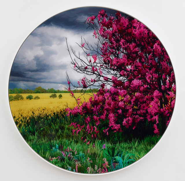 , 'Meadow,' 2018, Allouche Gallery