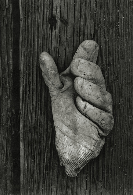 , 'Gloucester 1H (Glove),' 1944, Robert Klein Gallery