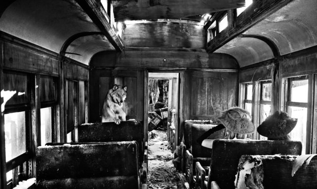 David Yarrow, 'Ride The Ghost Train ', 2015, Photography, Archival Pigment Print, Maddox Gallery