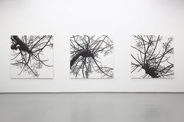 , 'Distance from the Sky IX,' 2013, Tomio Koyama Gallery