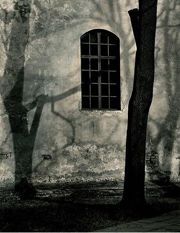 Roman Loranc, 'Shadow Play', 2008, Weston Gallery