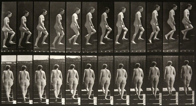 , 'Animal Locomotion: Plate 92 (Nude Woman Ascending Staircase),' 1887, Huxley-Parlour