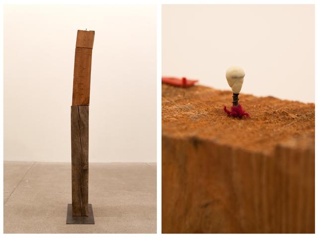 , '157 x 31 x 23 (chew me out),' 2011, Galleria Raffaella Cortese