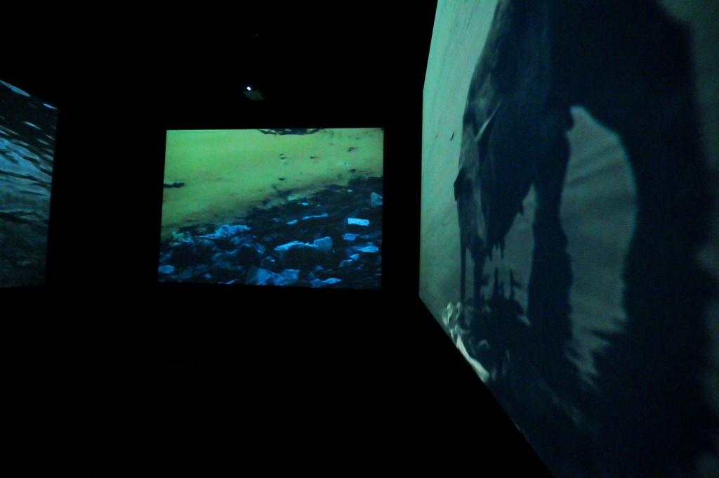 Installation view: Chittrovanu Mazumdar, Untitled, 2009