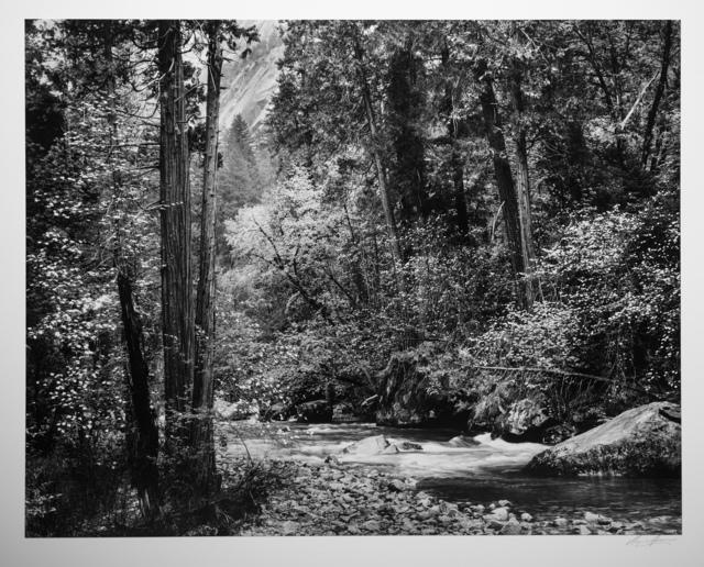 Ansel Adams, 'Tenaya Creek, Dogwood, Rain, Yosemite National Park', 1948, Photography West Gallery