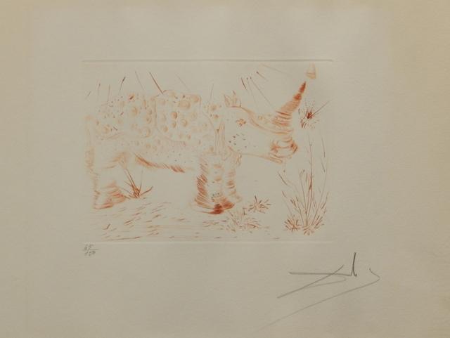 Salvador Dalí, 'Album Rhinoceros', 1968, Fine Art Acquisitions