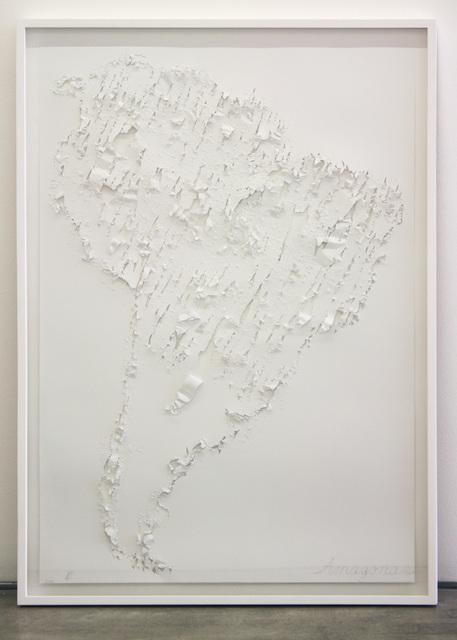 Rosemberg Sandoval, 'Amazonas', 2014, Galeria Pilar