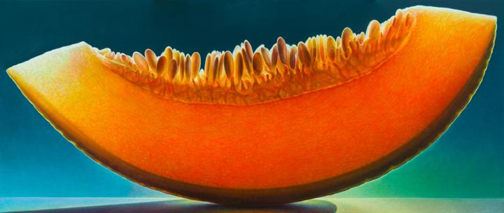 Melon Series #46
