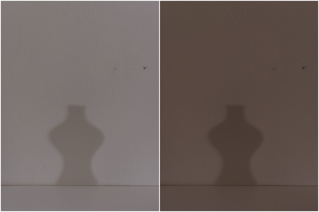 , 'Grizzana Diptych #053+103,' 2016, Gallery Luisotti