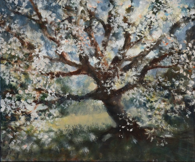 , 'Cherry Tree, Central Park,' 2014, Marlborough London