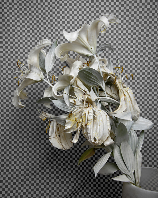 , 'Whiteout (Krylon ColorMaster Gloss White on White Oriental Lilies),' 2019, Catharine Clark Gallery