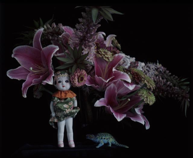Nobuyoshi Araki, 'qARADIS', 2014, Foam Fotografiemuseum Amsterdam