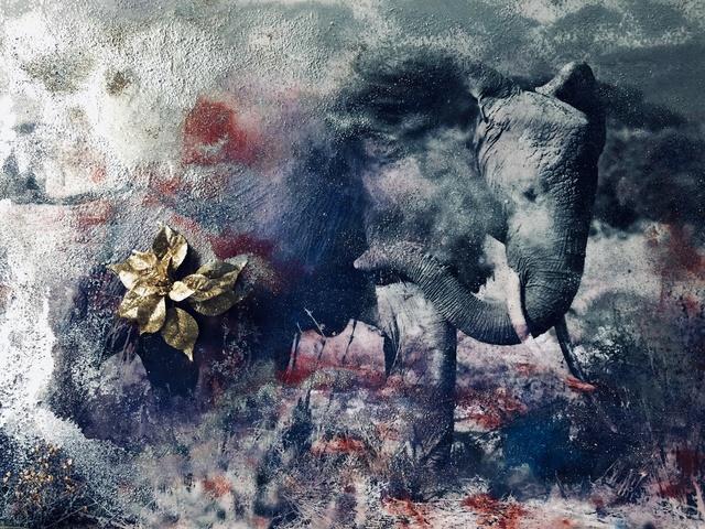 , 'Dusting Elephant Amboseli,' 2018, Isabella Garrucho Fine Art