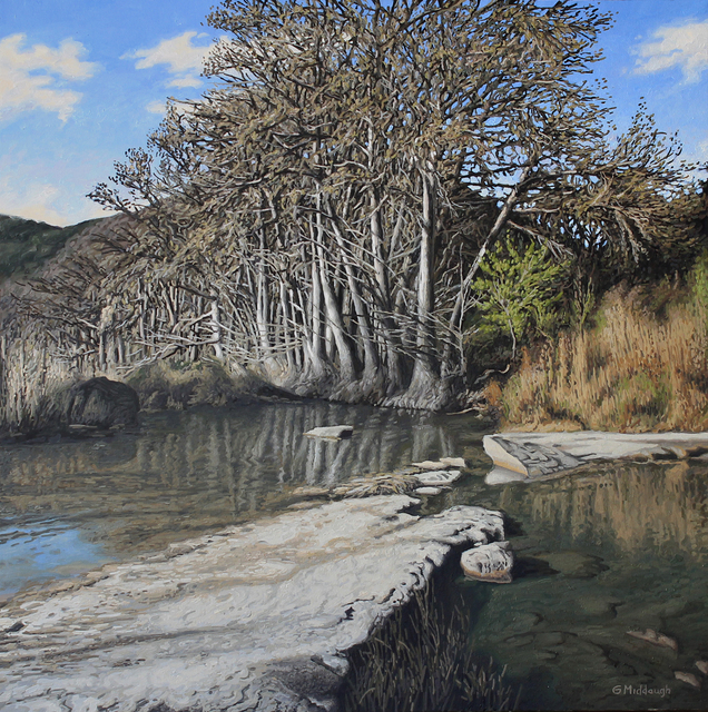 , 'A Grove of Trees along the Frio River in April,' , Davis Gallery & Framing
