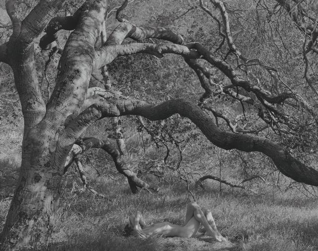 , 'Night, Sleep, Death and the Stars (Marc) Los Angeles, California,' 2015, Moran Bondaroff