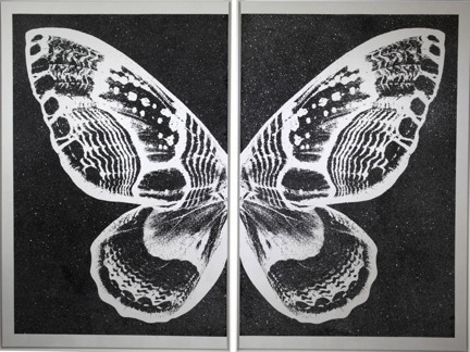 , 'Hybrid Pearl Butterfly on Black,' 2015, Octavia Art Gallery