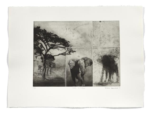 Frédéric Desaulniers, 'Fenêtre sur l'Afrique', 2007, Atelier-Galerie A.Piroir