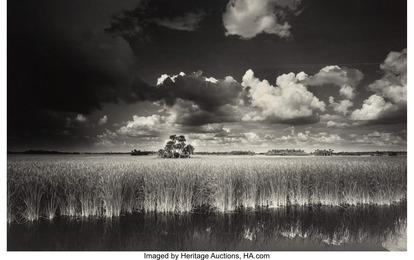 Ochopee, Western Everglades