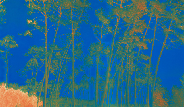 , 'France 134 YRB,' 2013-2016, L. Parker Stephenson Photographs