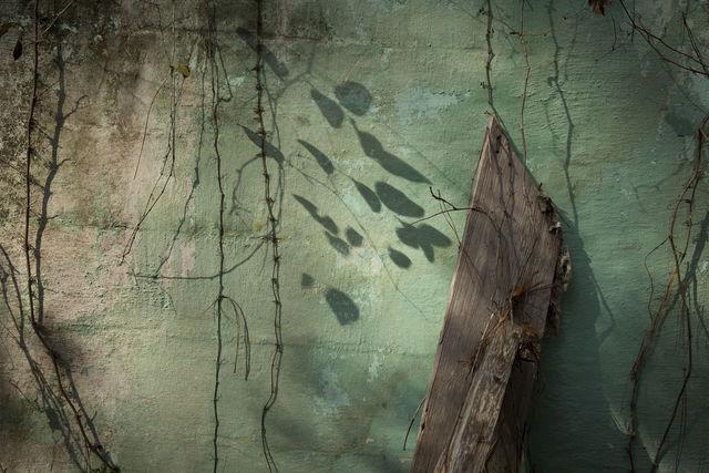 , 'Late Harvest: Green Wall, McKinnon, Georgia,' 2017-printed 2018, Thomas Deans Fine Art