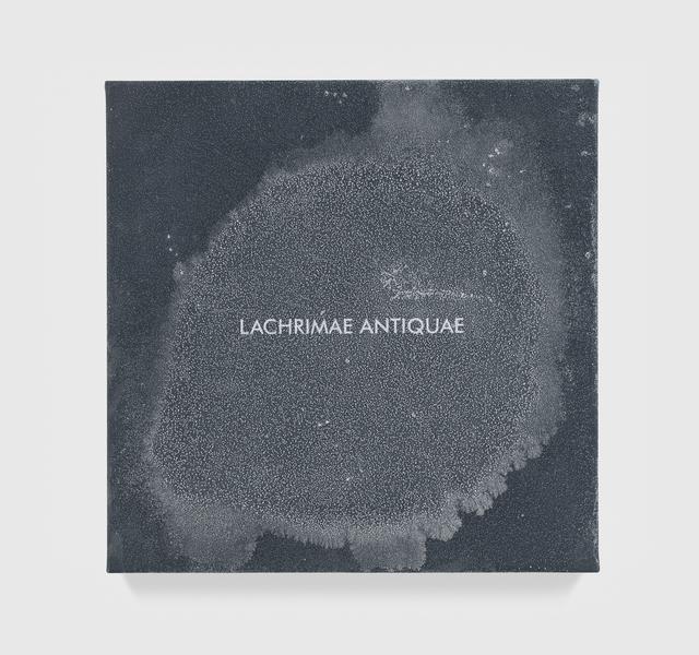 Susan Philipsz, 'Lachrimae Antiquae XXII', 2017, Tanya Bonakdar Gallery
