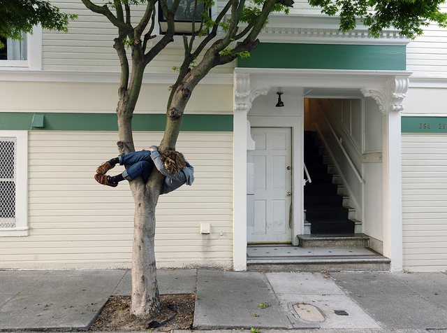 Lee Materazzi, 'Trees', 2017, Quint Gallery