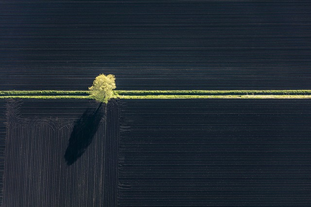 Klaus Leidorf, 'Yellow stripe', 2015, Contempop Gallery