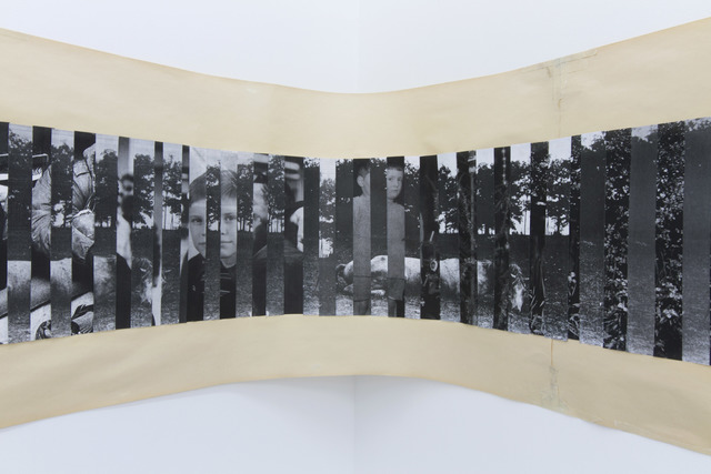 , 'Landscape (Dead Horse),' 2014, narrative projects
