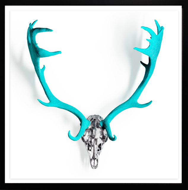 , 'Tiffany Diamond Dust Fallow Deer skull ,' 2019, M1 Fine Art