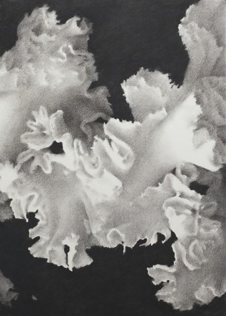 , 'Blossom,' 2017, Aye Gallery