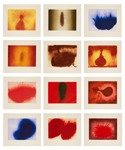 Anish Kapoor, '12 Etchings', 2007, Marlborough London
