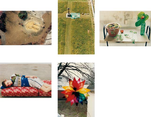 Wolfgang Tillmans, 'Five works: (i) playground, Luxembourg; (ii) charterhouse; (iii) still life, Herold Street; (iv) Volker, lying; (v) Weihnachtsstern', Phillips
