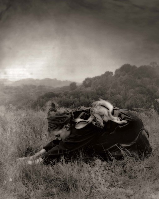 Beth Moon, 'Way of the Hare 2', 2006-2007, photo-eye Gallery