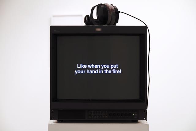 , 'Confessions,' 2011, Galerija VARTAI