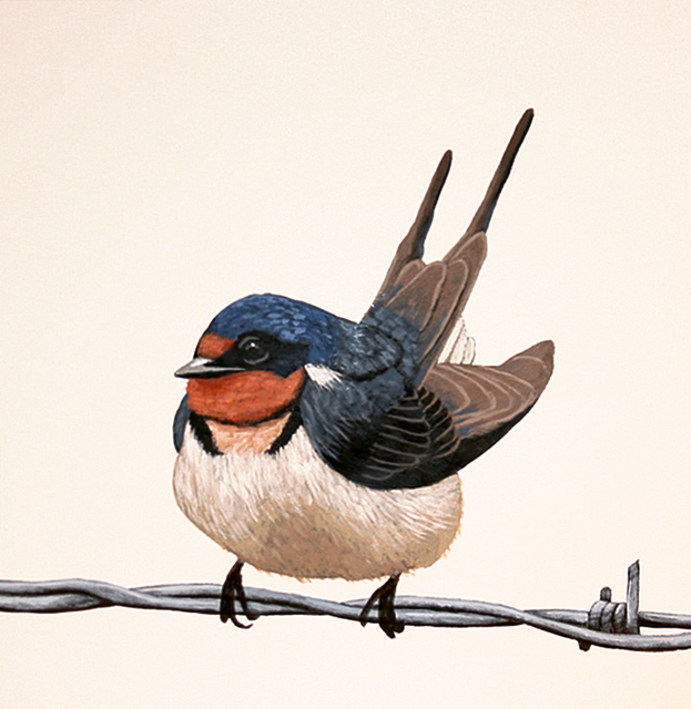 Mark Knudsen, 'Barn Swallow', 2018, Phillips Gallery