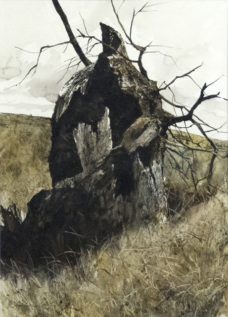 , 'Hollow Tree, Hollow Trunk,' 1972, Heather James Fine Art