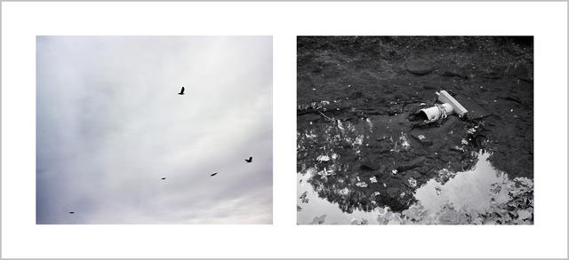 , 'Sennin poem by Kakuhaku (游仙诗·翡翠戏兰芍 郭璞),' 2012, C. Grimaldis Gallery