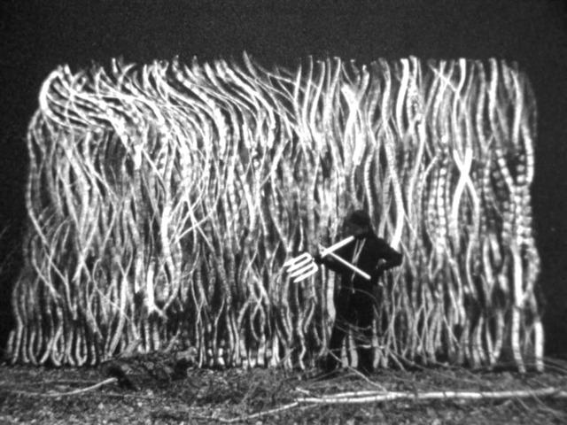 , 'The Grass is Singing,' 2015, Stevenson