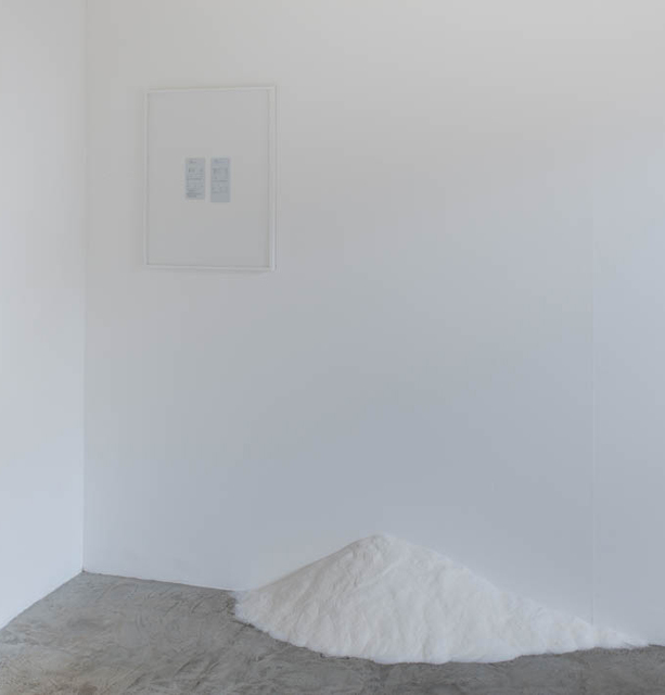 , 'Dream salt,' 2011, Galeria Jaqueline Martins