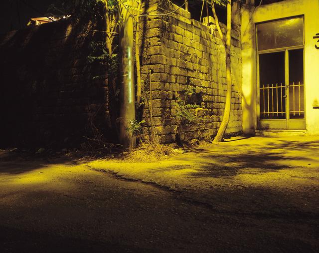 , 'Borrowed Skin Keeps Back Universal Recording,' 2000, C. Grimaldis Gallery