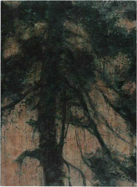 , 'Yaoshan Pine,' 2015, Aye Gallery