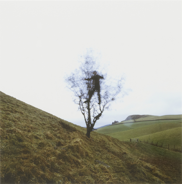 Andy Goldsworthy, 'Hawthorn Tree Shake, Penpont, Dumfriesshire, February 2008', 2008, Galerie Lelong & Co.