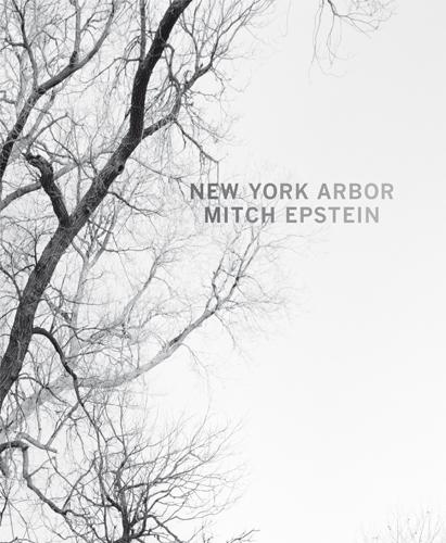 , 'New York Arbor,' 2014, Steidl