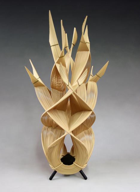 , 'Fire,' 2010, TAI Modern