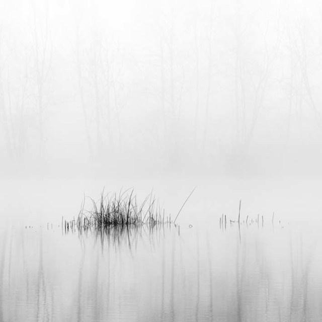 , 'Rhein 10, Austria,' 2015, Petra Gut Contemporary