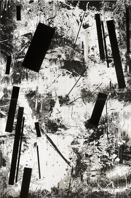 , 'Vertical Swamp nu. 6,' 2015, Galleri Bo Bjerggaard