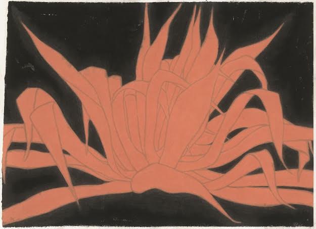 , 'Plant of the Century 龍舌蘭,' 2017, Galerie Ora-Ora