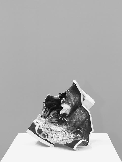 , 'Damnatio memoriae #2 ,' 2013, Casemore Kirkeby