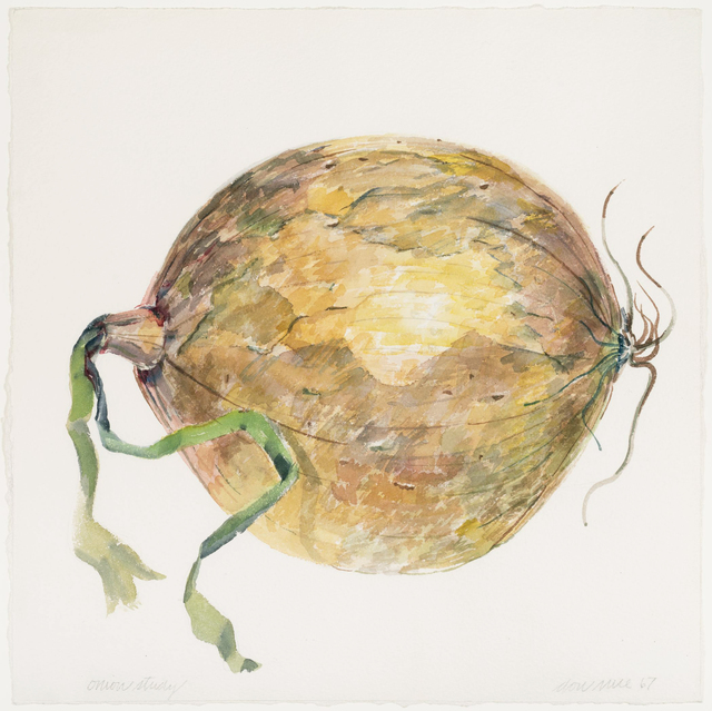 , 'Onion #2,' 1967, Allan Stone Projects